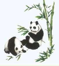 Bamboo Buffet